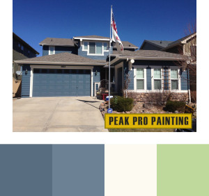 Peak Pro Blue South Denver Home